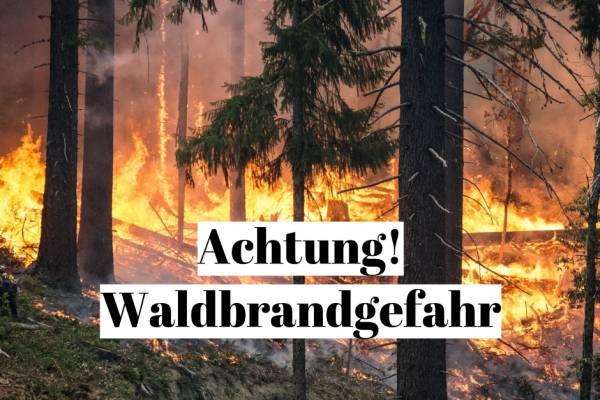 Waldbrandgefahr 1